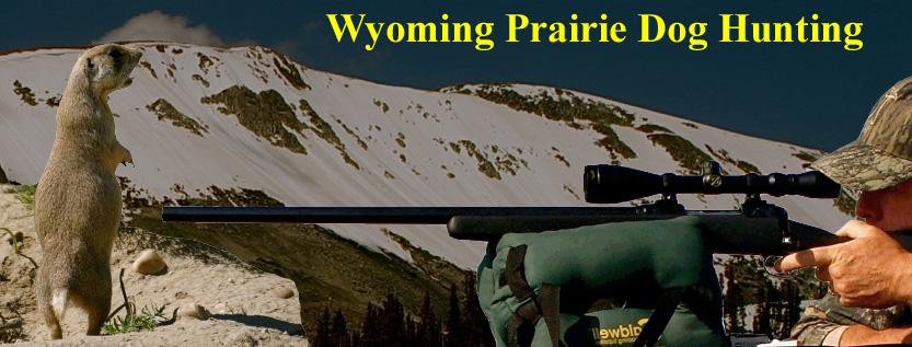 Wyoming Prairie Dog Hunting 2016 - YouTube